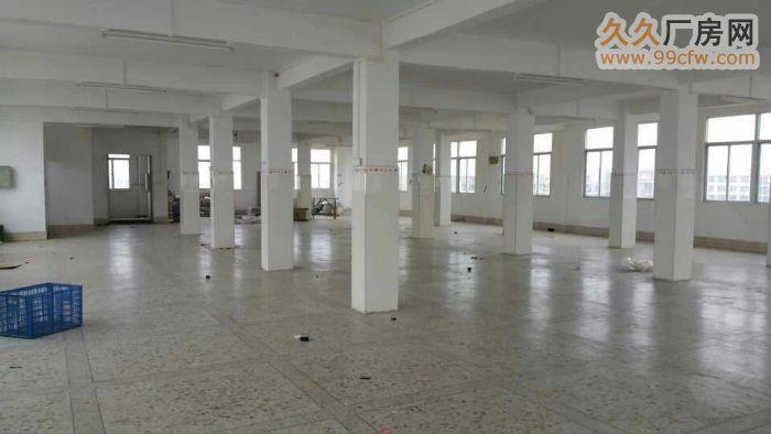 出租全新2500平方厂房/仓库有消防、三相电、电梯口等-图(3)