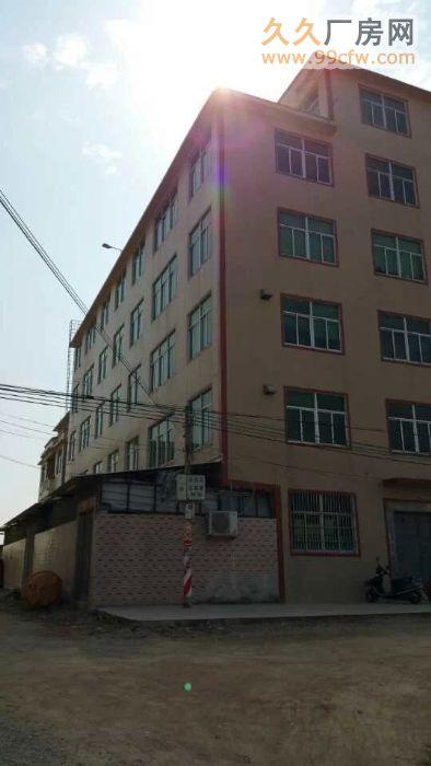 出租全新2500平方厂房/仓库有消防、三相电、电梯口等-图(5)