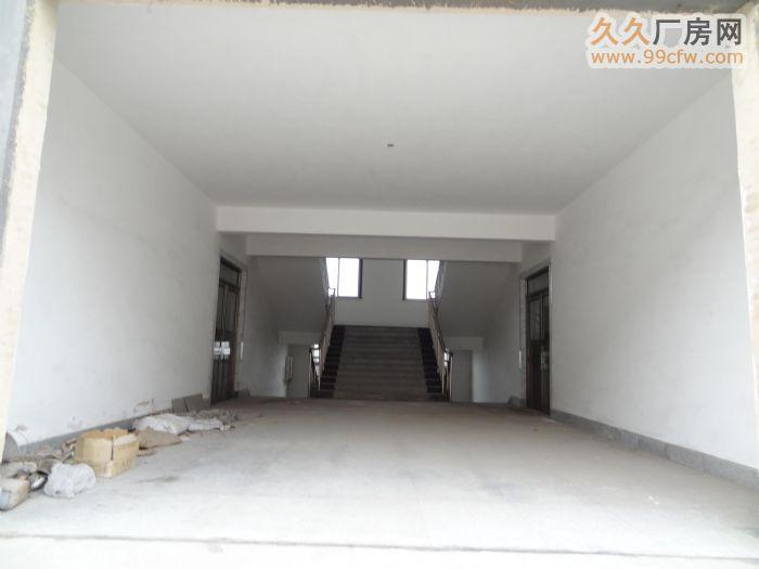 出租张博路附线厂房/办公楼-图(6)