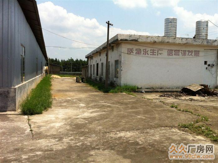 厂房招租。招商合作。博白县亚山工业营区-图(5)