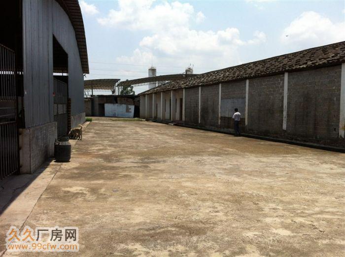 出租厂房广西玉林博白县亚山镇工业营区招租,招商合作。-图(4)