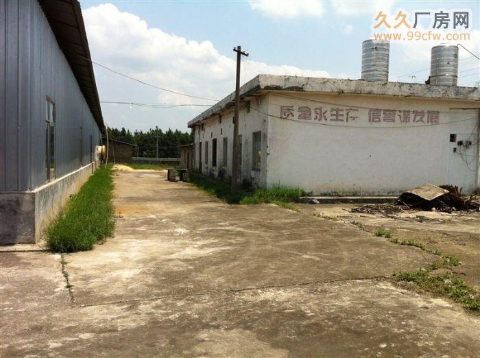 出租厂房广西玉林博白县亚山镇工业营区招租,招商合作。-图(5)