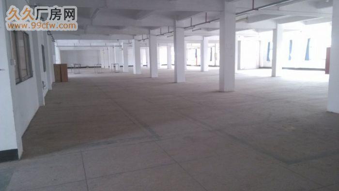 观澜汽车站后独门独院厂房4200平米(可过水电)-图(2)