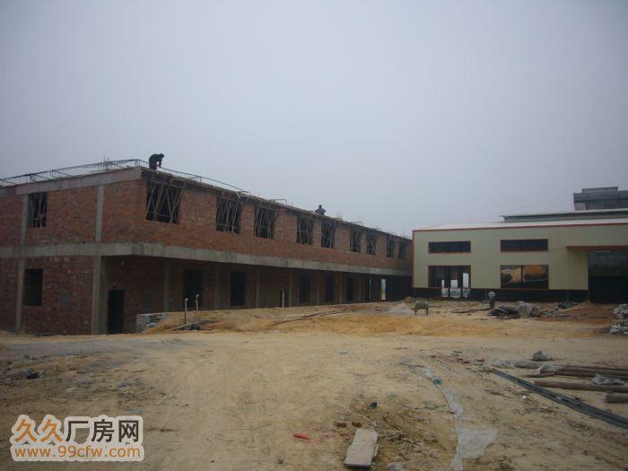 广西玉林二级路旁全新标准厂房招租、招商合作-图(2)