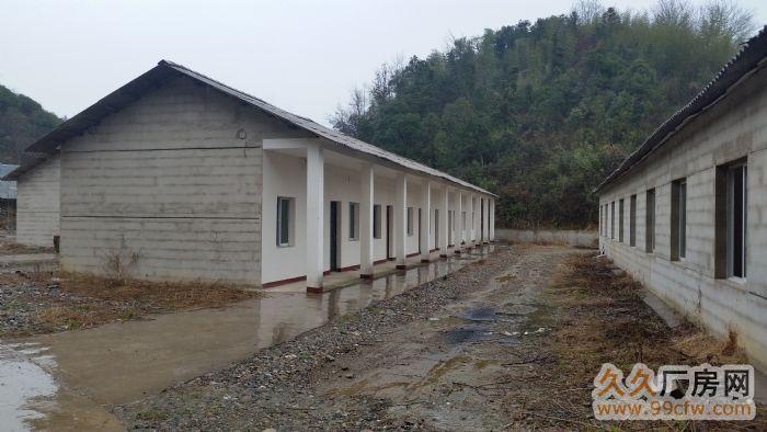 新建养殖场(70亩)整体出租-图(1)