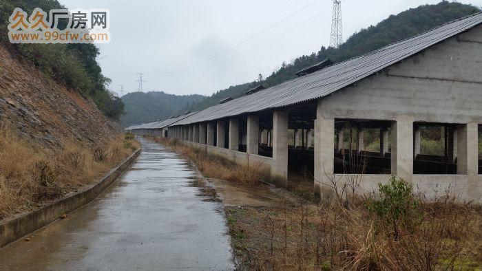 新建养殖场(70亩)整体出租-图(4)