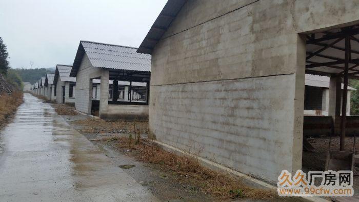 新建养殖场(70亩)整体出租-图(6)