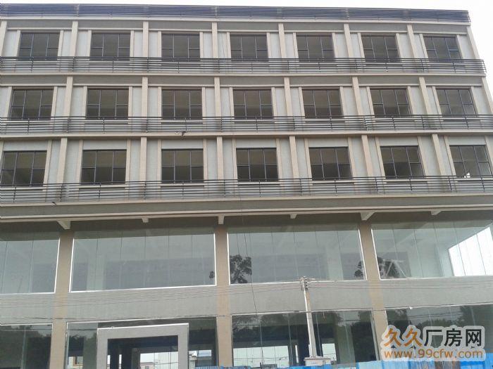 四会大沙镇马房工业区4000平方米全新租11&n-图(2)