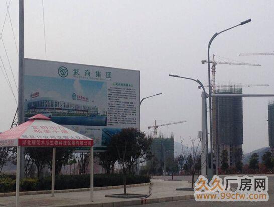 十堰市郧阳区武商量贩旁两宗商住用地出让-图(1)
