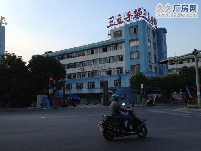 中山南区厂房出租/一楼可租550平方米/五楼870平方米-图(1)