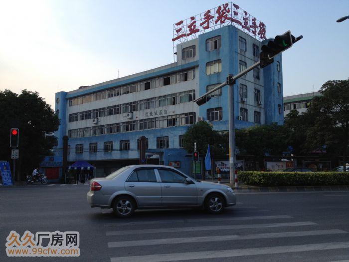 中山南区厂房出租/一楼可租550平方米/五楼870平方米-图(2)