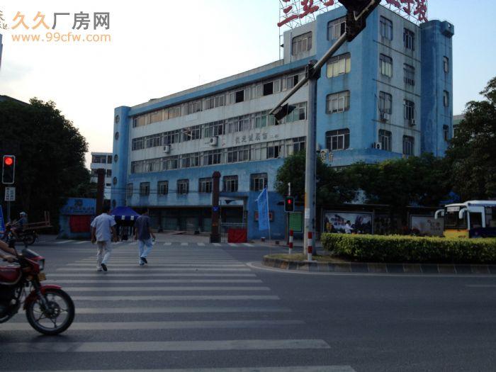 中山南区厂房出租/一楼可租550平方米/五楼870平方米-图(3)