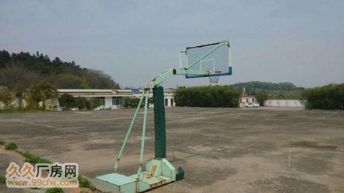 濮塘镇附近花园厂房对外出租或转让-图(8)