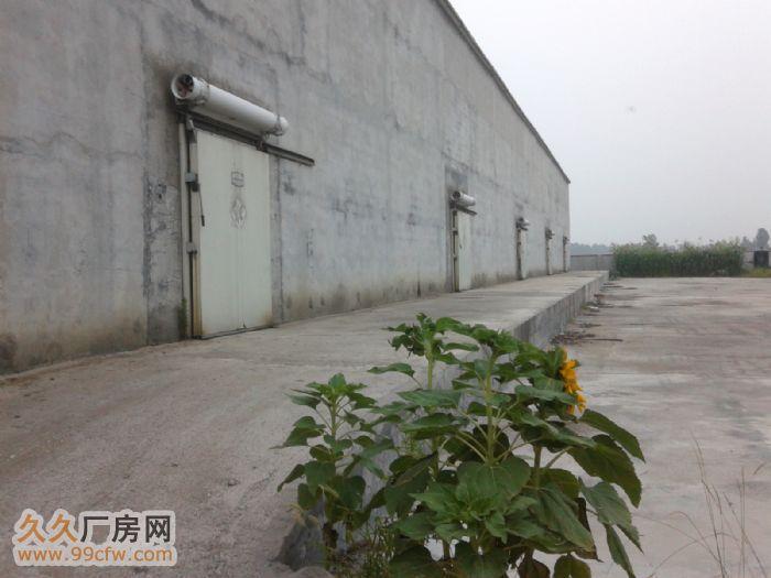 现有20亩地厂房及冷库5000吨,水电全、交通发达求租或出售-图(7)