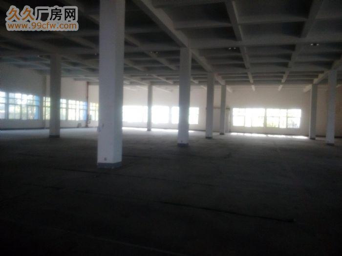 2200平方米一层厂房出租,高5米,可分租一半-图(1)