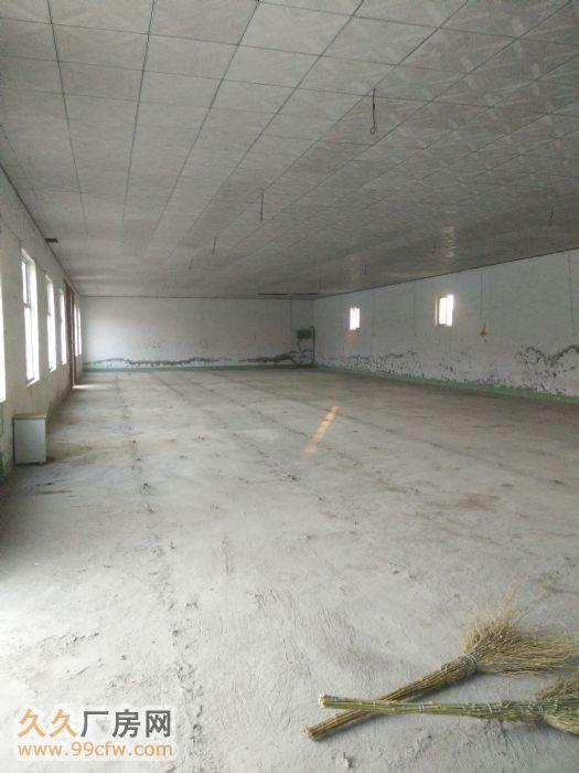 出租2个5000平米大院1600平米厂房仓库场地-图(5)