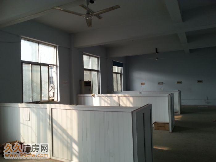 开封市豪德广场4200㎡房产出租-图(5)