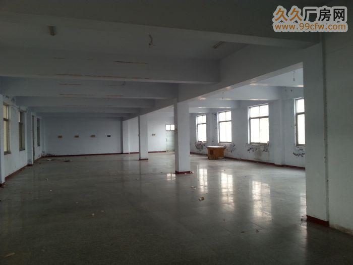 开封市豪德广场4200㎡房产出租-图(6)