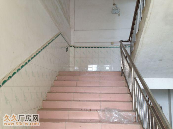 广西玉林陆川县古城镇标准厂房出租水电消防齐全-图(4)