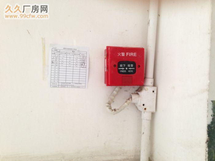 广西玉林陆川县古城镇标准厂房出租水电消防齐全-图(5)
