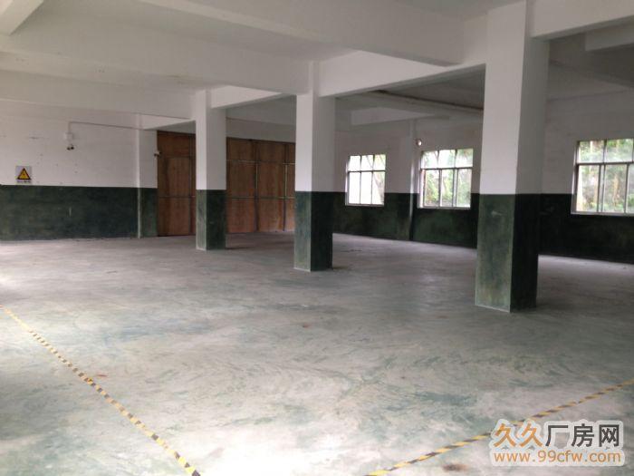 广西玉林陆川县古城镇标准厂房出租水电消防齐全-图(6)