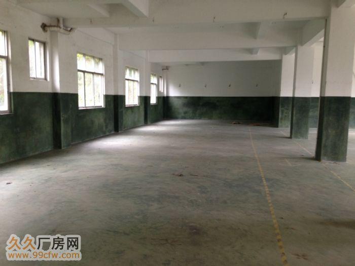 广西玉林陆川县古城镇标准厂房出租水电消防齐全-图(7)