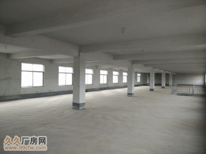 【同城在线推广】河东东立五金机电市场附近厂房出租-图(2)