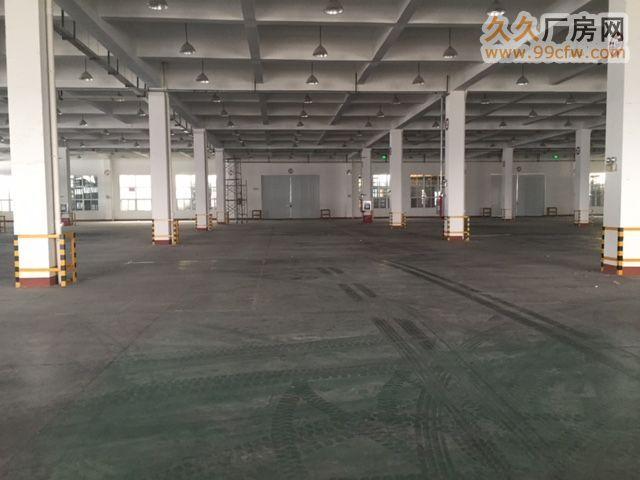 5000平米砖混结构仓库出租-图(1)