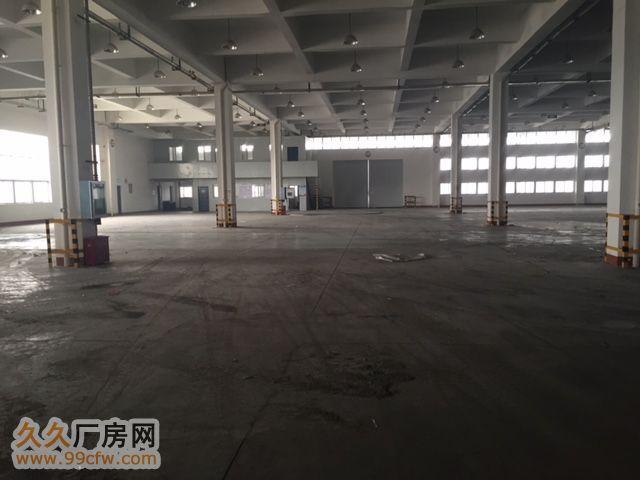 5000平米砖混结构仓库出租-图(2)