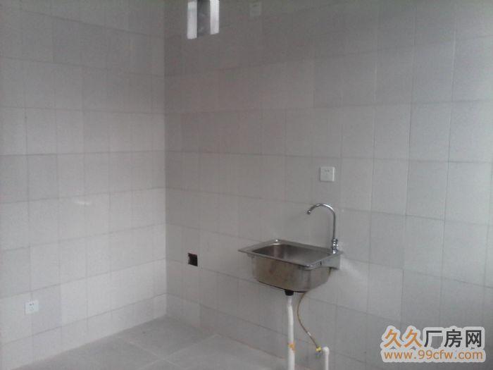 高新八路温泉村钛谷工业园厂房出租-图(3)