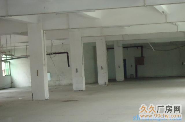 迎宾大道200米厂房出租-图(1)