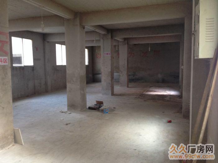 二戈寨南站厂房、仓库出租-图(6)