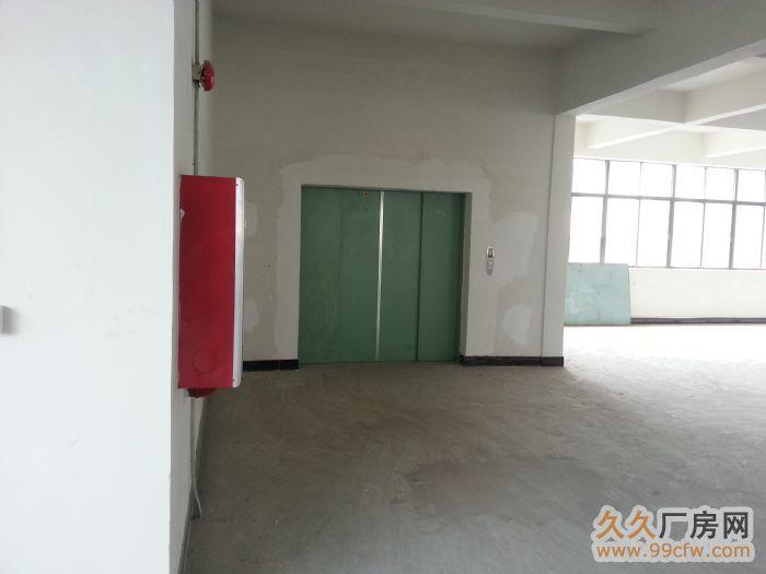 新华工业区标准厂房分租-图(1)