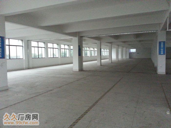 新华工业区标准厂房分租-图(2)
