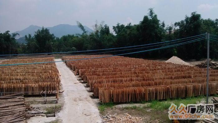清远汤塘木厂出租或转让-图(3)