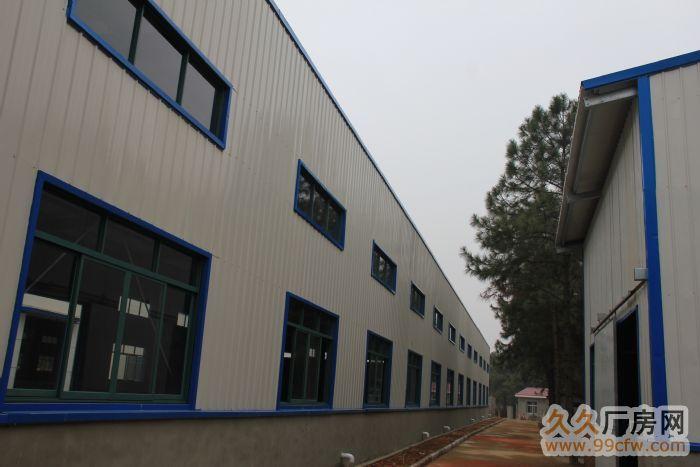 便宜出租全新钢架结构的厂房(非诚勿扰)-图(3)