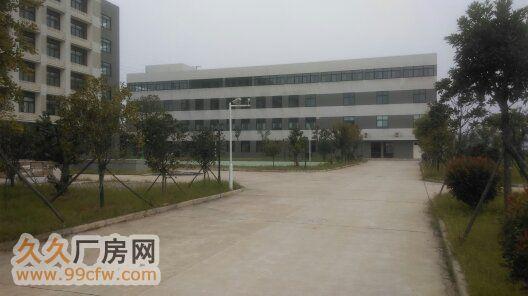 武汉开发区康师傅旁3300m2新框架厂房-图(1)