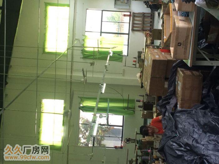 九龙工业园厂房出租、配套水电设施齐全-图(5)