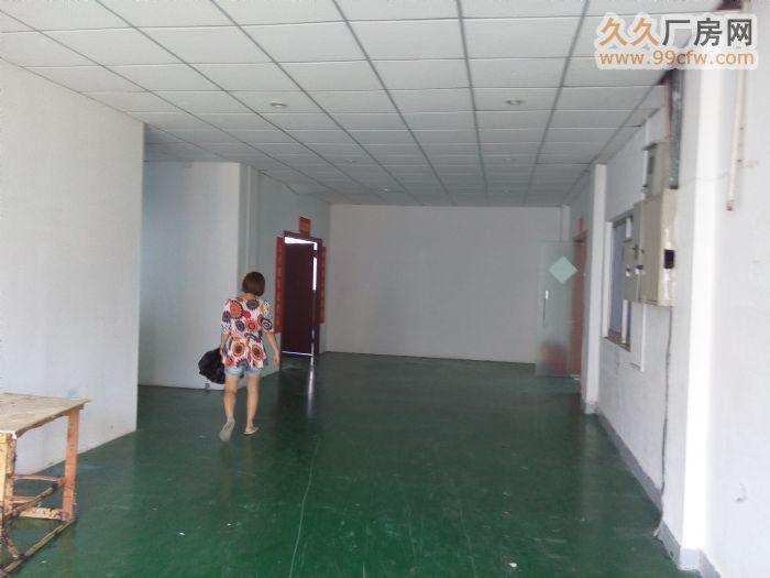 东莞寮步镇厂房招租,华南工业城标准厂房一楼900,现成装修-图(2)