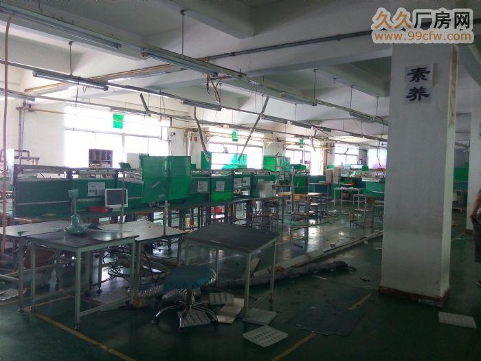 东莞寮步镇厂房招租,华南工业城标准厂房一楼900,现成装修-图(3)