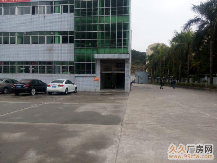 东莞寮步镇厂房招租,华南工业城标准厂房一楼900,现成装修-图(5)