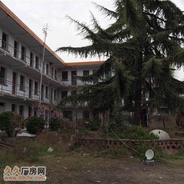 低价出租标准厂房仓库-图(6)