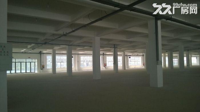 潍坊市区大型多层标准化厂房现对外招商租售-图(4)