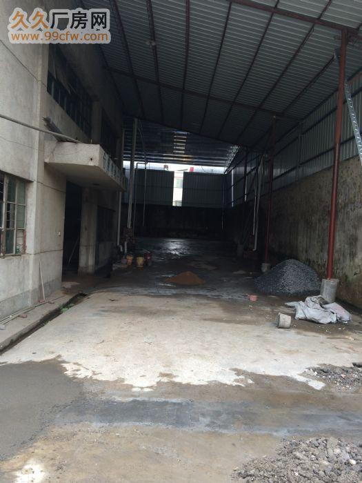 大学路东联市场旁224M²—1360M²全标准厂房招租-图(4)