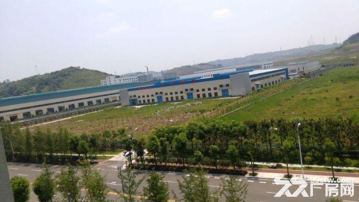 新建标准化钢构厂房出租,空地出租(猇亭)-图(2)