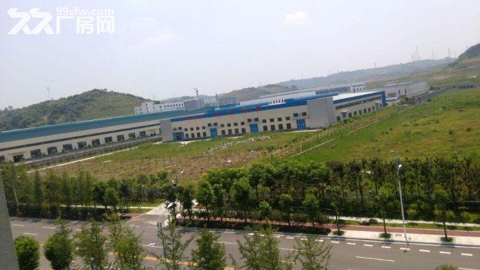 猇亭标准化钢结构新厂房优价租售-图(1)
