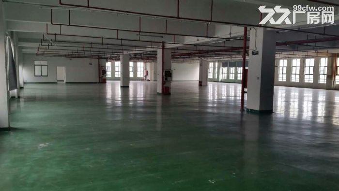 公明塘家村新出独院厂房2700平方租-图(2)