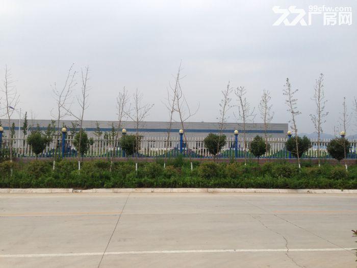 费县上冶镇工业园内大型钢结构厂房出租-图(1)