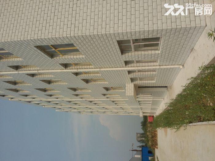 3000平米6000平米10000平米选择有配套的办公住宅楼-图(1)
