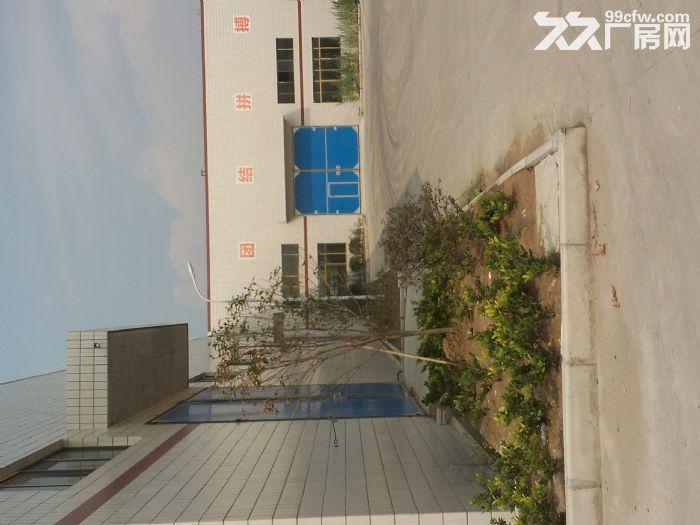 3000平米6000平米10000平米选择有配套的办公住宅楼-图(7)